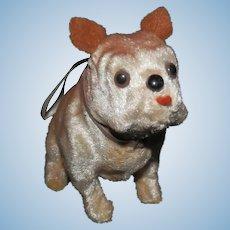 Precious Bull Dog For You Too Love