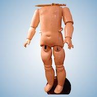 "Antique/Vintage Composition Doll Body 15"""