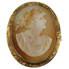 Antique 10k Yellow Gold Oval Coral Cameo Pin/Pendant