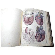 5 Volume set ' Manuel d'Anatomie Descriptive du Corps Humain' by Jules Cloquet published in Paris in 1825