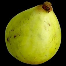 Vintage Italian Painted Alabaster Pear