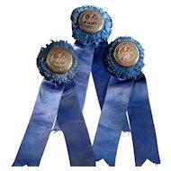 Three 1910 Clarke County Horse Show Ribbons