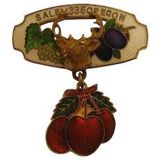 Vintage Enameled Salem Oregon 336 Elks Lodge Pin
