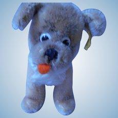 Steiff Googly eyed Dog, Susi