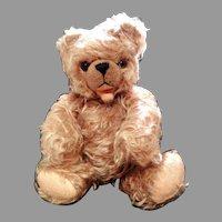 Vintage Hump Back German Mohair Bear