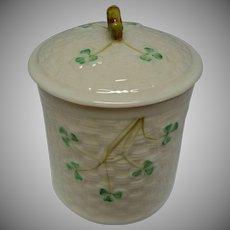 Vintage Belleek Covered Jar