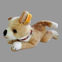Vintage Steiff, FAO Schwarz, AKC Stuffed Dog