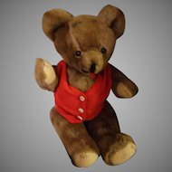 Vintage Mohair Teddy Bear with Shoe Button Eyes