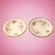 Paragon Bone China Victoriana Rose Coasters - Set of Two