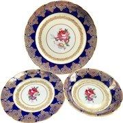 Paragon Bone China A72 Cobalt Blue Gold Filigree 3-Piece Set Plates and Bowl