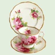 Royal Albert Bone China American Beauty Teacup Saucer and Dessert Plate