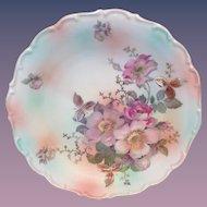 Schumann Bavaria Wild Rose 11-3/4 Inch Decorative Plate