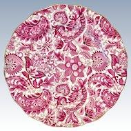 Royal Standard Bone China #1445 Pink Paisley Chintz Luncheon Plate