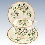 Royal Albert White Dogwood Bone China Cup, Saucer, Dessert Plate
