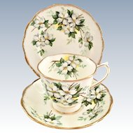 Royal Albert White Dogwood Bone China Cup, Saucer, Dessert Plate