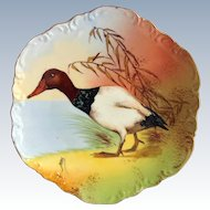 Coronet Limoges Game Bird Plate Canvasback Duck Signed Max Early 1900s