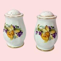 Royal Standard England Woodland Wonder Bone China Daffodil Salt and Pepper Shakers