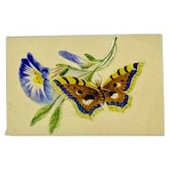 Miniature pith painting cut out of butterfly and morning glory