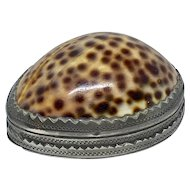Antique Georgian cowrie shell and pewter snuff box