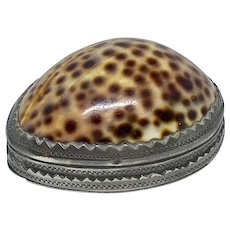 Cowrie shell and pewter snuff box