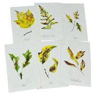 Set of six Louis Prang fall leaf cards - third group