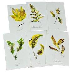 Set of six Louis Prang fall leaf cards - third group