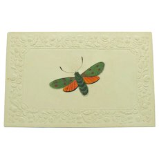 Victorian Miniature Moth Painting on Embossed Paper