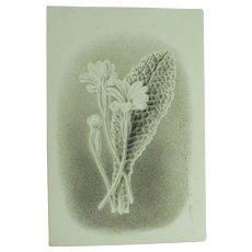 Antique Miniature Hand Painted Watercolor Floral en grisaille