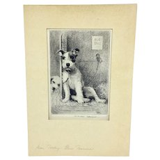 Original Morgan Dennis etching of Wire Fox Terrier Puppy