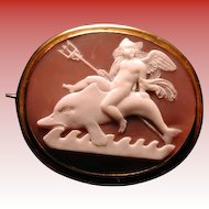 Fabulous rare angel on dolphin cameo