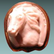 Cameo of horse head in horseshoe