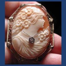 Lovely cameo Habille in 14 kt white gold filigree