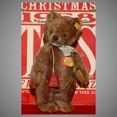 "MATRIX STOCKING STUFFER !!   The 10"" Mint 1950's Steiff Teddy Bear made Exclusively for FAO Schwarz"