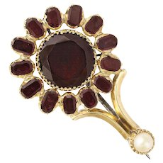 15 Karat Gold, Garnet, Haley's Comet Brooch, Georgian