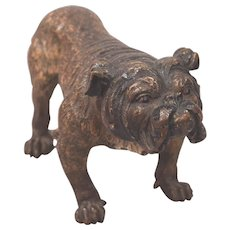 Antique Large Cold Painted Vienna Bronze English Bulldog