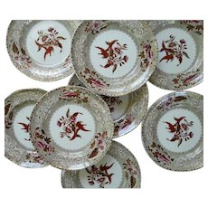Eight Copeland Camilla Pattern Clobbered Transfer Printed Dinner Plates