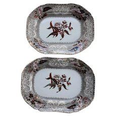 A Pair of Copeland Camilla Pattern Clobbered Transfer Printed Small Platters