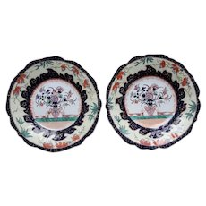 "A Pair of Mason's Ironstone 9"" Plates"
