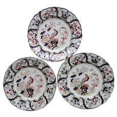 Set of Three Mason's Ironstone Plates Pheasant Pattern