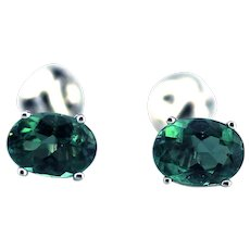 Natural Paraiba Tourmaline Stud Earrings 14KT White Gold