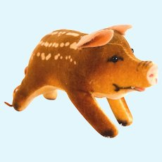 STEIFF BABY BOAR Spotted 1959; Very Small 4 Inches Long