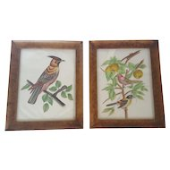 Pair of Framed Pictures of Birds Painted on Fabric