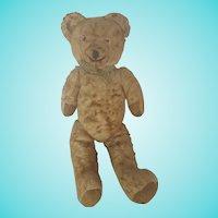 "Sweet Vintage 1930's 16"" Jointed Golden Brown Teddy Bear"