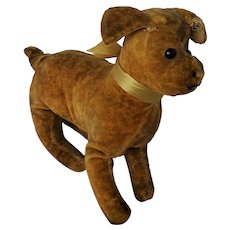 Adorable Early 1900's Gold Velveteen Dog Stuffed Toy from my Collection