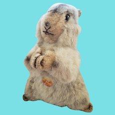 Vintage Steiff Molly Piff Marmot or Groundhog Stuffed Toy w/Tag & Button