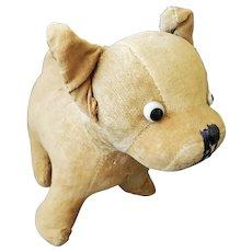 Well Loved Vintage 1920's Tan Velveteen Bulldog Stuffed Toy
