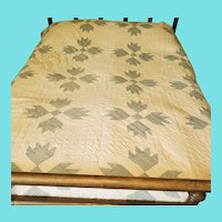 Charming Vintage Country Bear Paw Quilt in Green & White Homespun