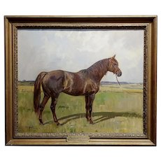 Peter Biegel -Matador , Portrait of a Horse -Oil painting
