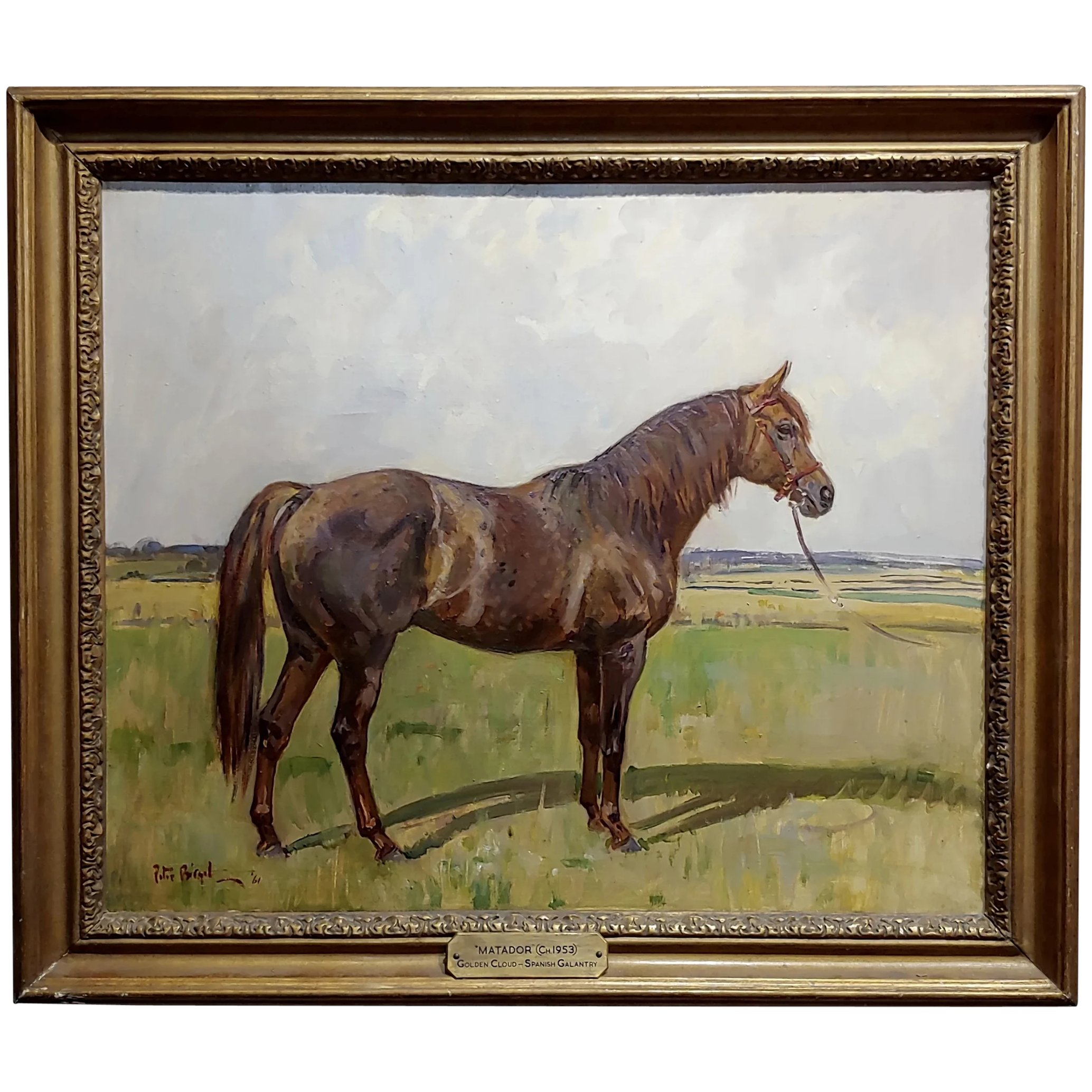 Peter Biegel Matador Portrait Of A Horse Oil Painting Pasadena Art Monkeys Ruby Lane