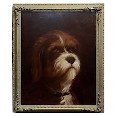 19th century Portrait of a fluffy Dog - Oil painting